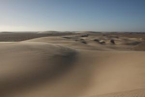 Wüstenlandschaft mit Sanddünen