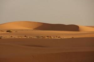 Wüstendüne bei einem der besten Lagerplätze